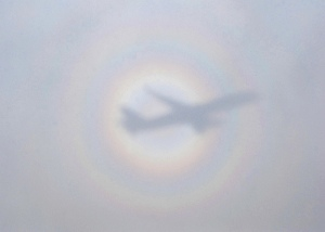 shadow of jet on clouds, with rainbows circling